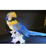 Karl Ens Large Blue And Yellow Macaw Parrot Figurine With Windmill Mark - $395.00