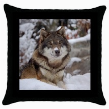 Throw Pillow Case Decorative Cushion Cover Alone Wol Gift model 30522486 - $16.99