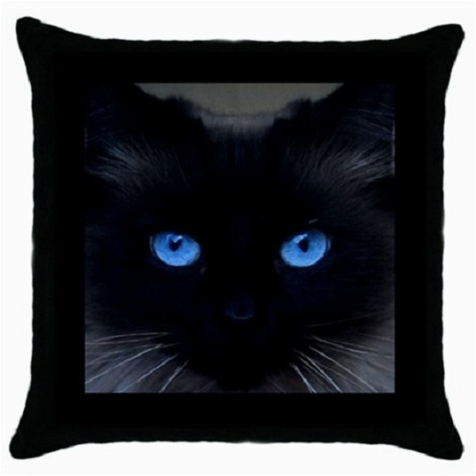 Throw Pillow Case Decorative Cushion Cover Friendly Cat Blue Eyes Gift 12518645