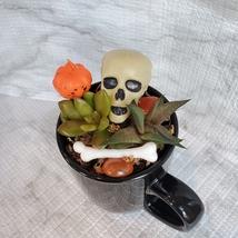 Halloween Planter with Live Succulents, Mug Garden, Skull Halloween fairy garden image 3