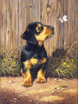 """Junior Small Paint By Number Kit 8.75""""X11.75""""-Dachshund Puppy - $9.43"""