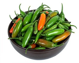 Sow No GMO Pepper Early Hot Jalapeno Non GMO Heirloom Vegetable 50 Seeds - $2.64