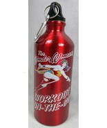 Wonder Woman Aluminum Workout on The Go  Water Bottle, Red - $14.80