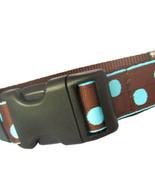 Candy Dot: Aqua on Brown Grosgrain Adjustable Dog Collar / Made in Japan - $29.00