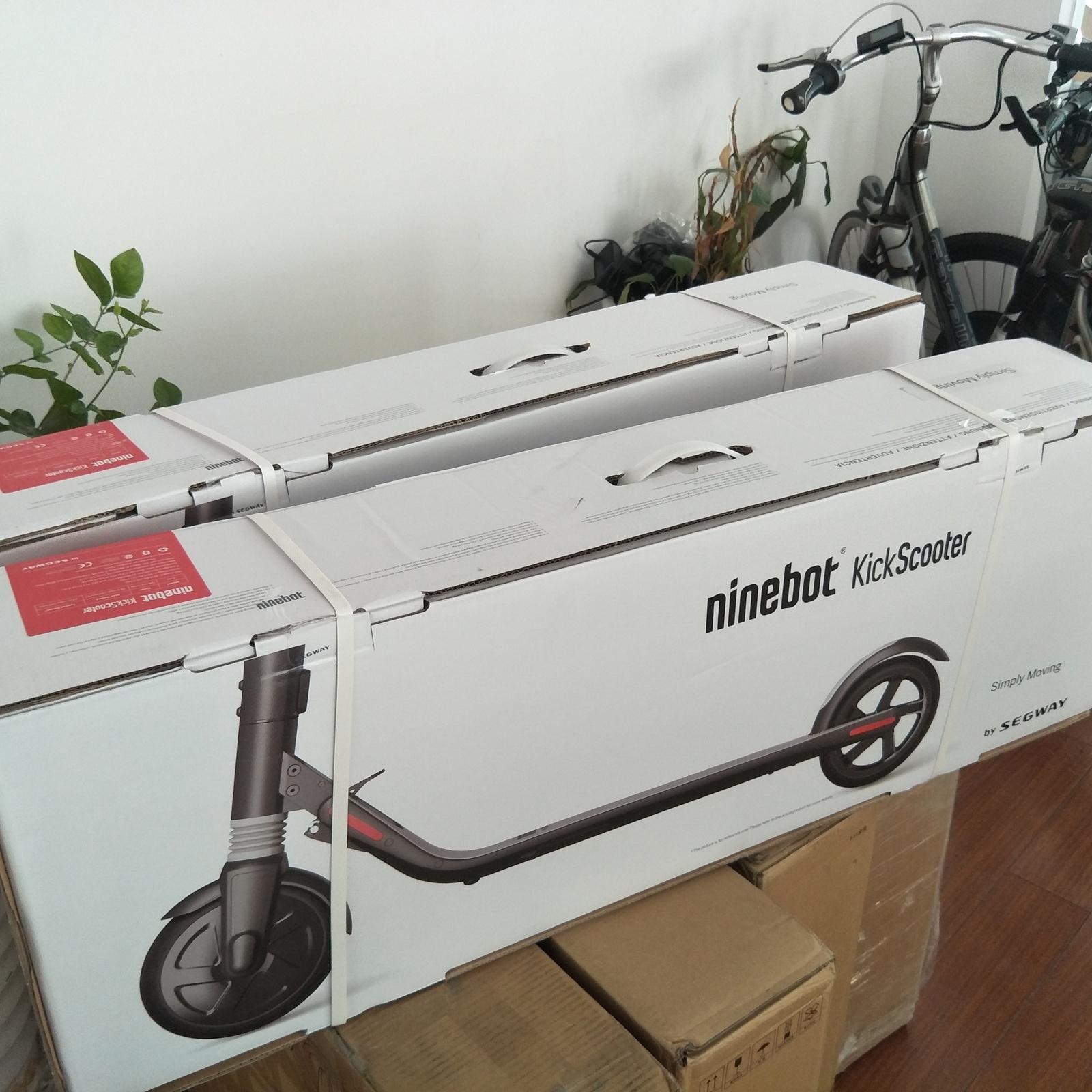 Ninebot Es4 Custom Firmware