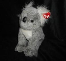 Ty 2003 Gorro Clásico Amigo Beaut Gris Koala Peluche Juguete de Felpa Et... - $17.59