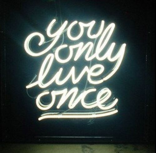"""New You Only Live Once Beer Bar Neon Light Sign 24""""x20"""" Ship From USA"""