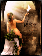 Venus Goddess Of Love Desire Lust Spell Cast Bring My Soulmate To Me Cast  - $444.00