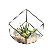 Asvert Geometrische dekorative Terrarium Cube geneigte Klarglas (style6) - $44.51