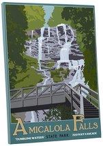"Pingo World 0209QEZ4R54 ""Steve Thomas Amicalola Falls State Park"" Galler... - $53.41"
