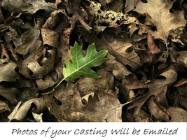 Turn Over a New Leaf SPELL.Pics of Casting Incl. For Fresh Starts/Bad Habits - $22.60