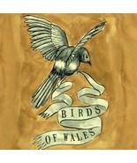 Birds of Wales [Audio CD] Birds of Wales - $11.88