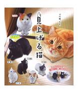 Miageru Neko Cats Looking Up at You Mini Figure Collection - $10.99