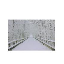 "Northlight Small Fiber Optic Winter Wooden Bridge Canvas Wall Art 12"" x ... - $27.22"