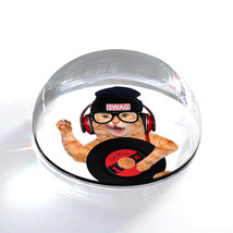 """Swag Hip Kitty Funny Cat Photograph Art 2"""" Crystal Dome Magnet or Paperw... - $15.99"""