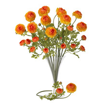 "23"" Ranunculus Stem (Set of 12) - $78.51"