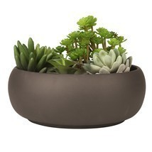 Modern Unglazed Round Ceramic Succulent Cactus Planter Pot NoTax FreeShi... - $26.16