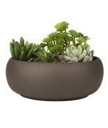 Modern Unglazed Round Ceramic Succulent Cactus Planter Pot NoTax FreeShi... - €22,17 EUR
