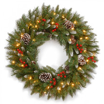 National Tree 30' Frosted Berry Wreath with 100 Clear Lights - $70.50