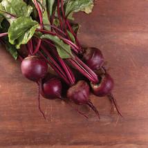 Moneta Beet Seed ,Vegetable Seeds,  Ship From US - $15.00