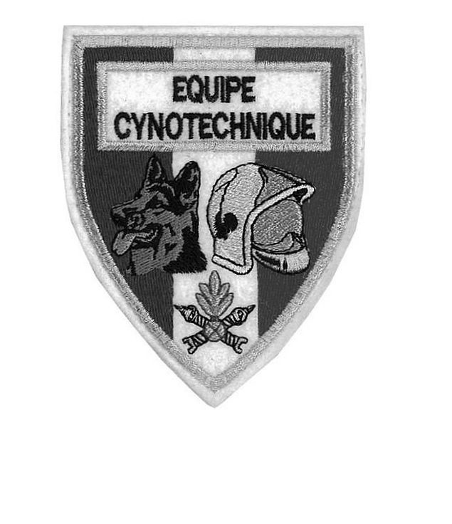 equipe cynotechnique french fire department k 9  tactical grey  large 4.25 x 4.5 in cotton10.99