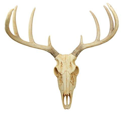 Ebros Gift Rustic Hunter Deer 10 Point Buck Skull Trophy Antlers Wall Mounted Pl