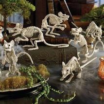 Set of 6 Life Like Bone Chilling Skeleton Mice Bones Halloween Prop Deco... - $38.56