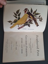 1898 antique CANARY PARROT CAGE BIRDS illus food breeding care w COLOR P... - $89.95