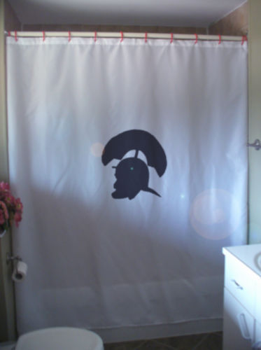 Primary image for Shower Curtain ancient Greek Roman helmet legion army