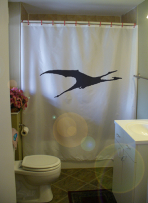Primary image for Shower Curtain dragon flight fantasy mythical creature