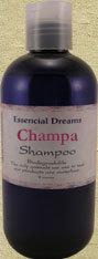Shamchampa