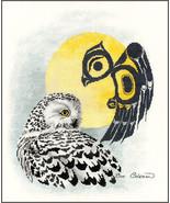Snowy Owl cross stitch chart Sue Coleman The Stitching Studio  - $14.40