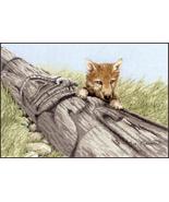 Wolf Pup cross stitch chart Sue Coleman The Stitching Studio  - $14.40