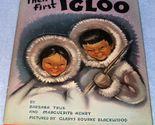 First igloo1a thumb155 crop