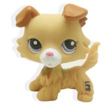 Littlest Pet RARE Collie Dog Puppy Yellow Tan Brown White Blue Eyes lps ... - $15.99