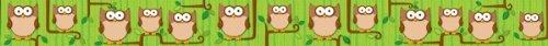 Carson Dellosa Woodland Owls Borders 108100