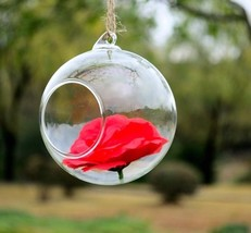 Clear Glass Round Terrarium Flower Plant Hanging Vase Hydroponic Home Of... - $37.61