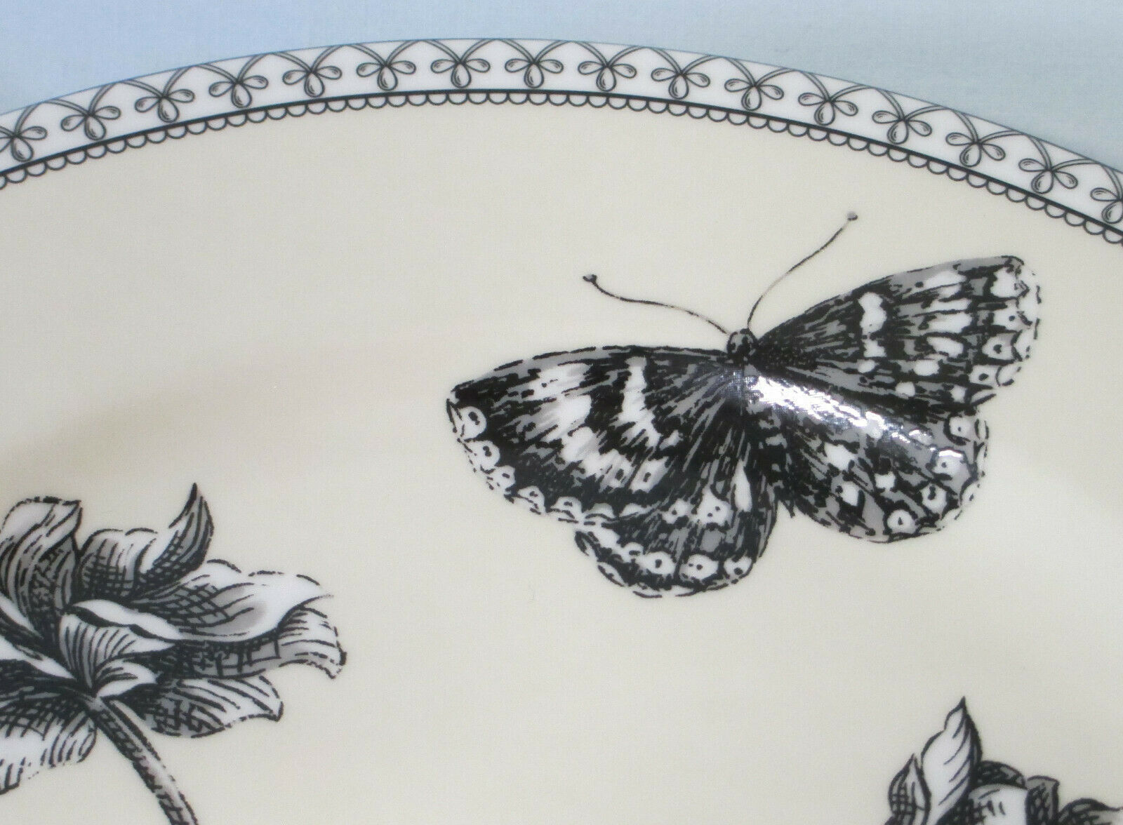 Charter Club Tuilleries Cream Floral Butterfly Salad Plate set of 3