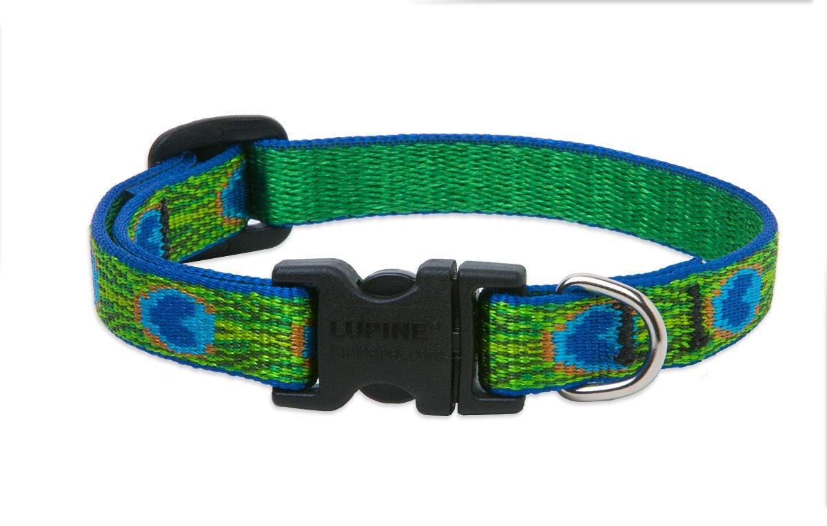 "LupinePet Originals 1/2"" Tail Feathers 10-16"" Adjustable Collar for Small Dogs"