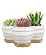 SQOWL 2.5 inch White Wave Ceramic Succulent Planter Pot Modern Cute Smal... - $27.85 CAD