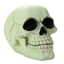 Glow In the Dark Luminescence Skull Halloween Decorative Accessory 3.75 Inch Tal - $17.81