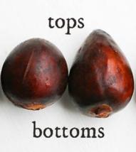 2 Organic Avocado Seeds, Non-GMO, Variety: Hass image 2