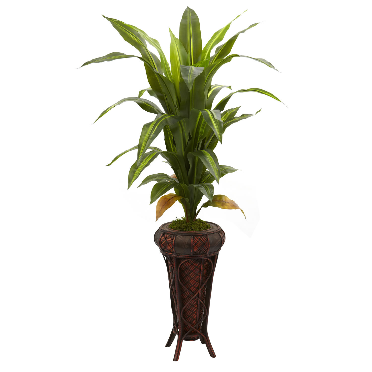 "Primary image for 57"" Dracaena w/Stand Silk Plant (Real Touch)"