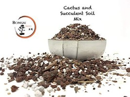 Succulent Soil and Cactus Soil Great for Succulent Planter and Succulent... - $22.61