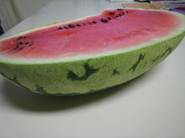 SHIPPED FROM US 50 Watermelon Jubilee Citrullus Lanatus 40 LB Fruit Seed... - $11.00