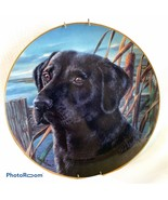 Retired Limited Edition Franklin Mint Black Labrador Plate MAN'S BEST FR... - $23.38