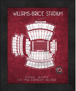 "North Carolina Williams-Brice ""Retro"" Stadium Seating Chart 13x16 Framed... - $39.95"