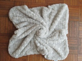 BLANKETS AND BEYOND GRAY MINKY ROSE SWIRLS PLUSH LOVEY BLANKET HTF RARE - $37.12