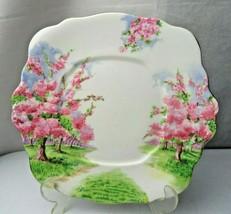 Royal Albert Blossom Time Landscape Design Pink Vintage Dinner Plate - $30.00