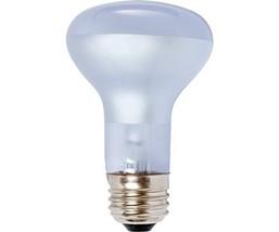Agrosun/Dayspot BURP413 Incandescent Growlight Plant Bulb, 60 Watt - $6.98